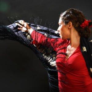Flamenco Para Siempre